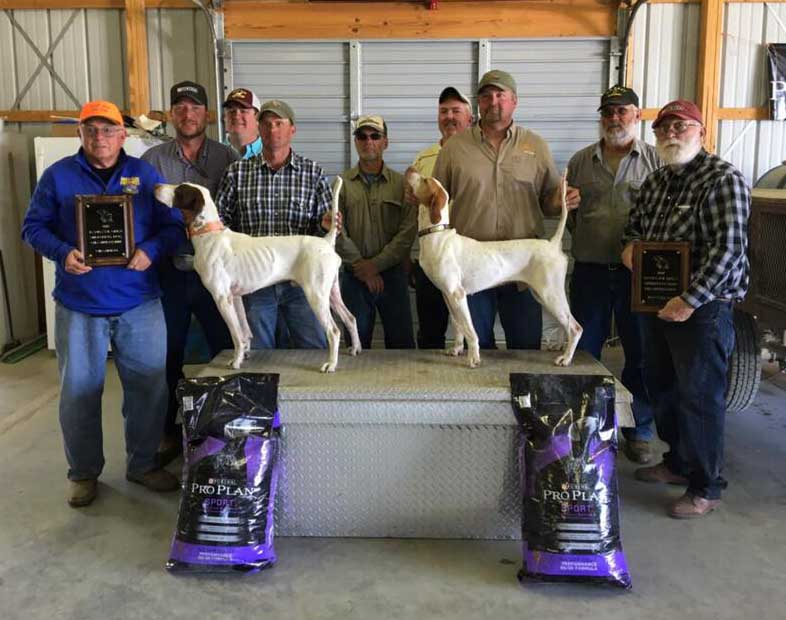 World Class Cliff Wins 2017 Champion of the Jayhawk Open Shooting Dog Championship