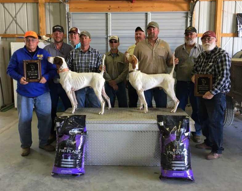 World Class Cliff Wins 2017 Champion of the Jayhawk Open Shooting Dog Championship