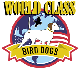 World Class Bird Dogs